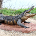 Waco Sculpture Zoo - American Alligator