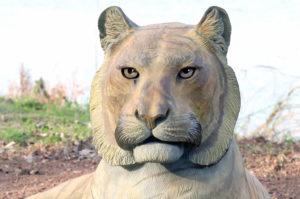 Waco Sculpture Zoo - Sumatran Tiger Face
