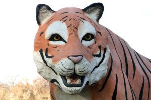 Waco Sculpture Zoo - Tyson Face